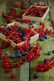Berries. Red currant and blueberries. Two boxes of berries on an old shabby table. View from above Stock Image