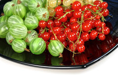 Berries red currant and gooseberries Royalty Free Stock Images