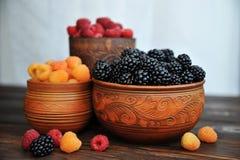 Berries of red and yellow raspberries stock photo