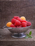 Berries red and yellow raspberries. In a metal bowl on a dark wooden background royalty free stock photo