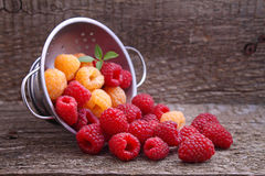 Berries red and yellow raspberries. In a metal bowl on a dark wooden background stock images