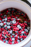 Berries reduction preparation Royalty Free Stock Photos