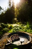 Berries and rhubarb pie. Wild berries and rhubarb pie on a stomp, in the garden Stock Image