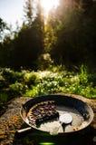 Berries and rhubarb pie Stock Image