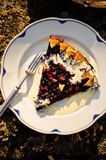 Berries and rhubarb slice pie Royalty Free Stock Images
