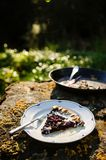 Berries and rhubarb slice pie Royalty Free Stock Photos