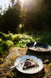 Berries and rhubarb slice pie Stock Photography