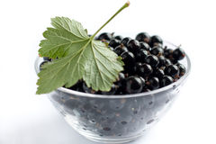 Berries ripe black currant in bowl Stock Photography