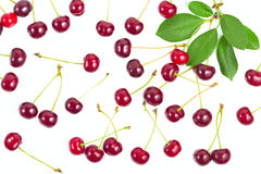 Berries ripe cherry with a branch and leaves. Royalty Free Stock Photography
