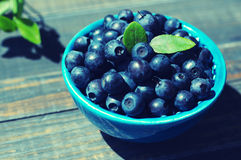 Berries of ripe juicy bilberry in a blue small plate Royalty Free Stock Photo