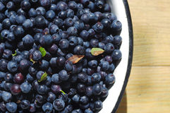Berries of ripe juicy bilberry in an iron bowl Royalty Free Stock Photo