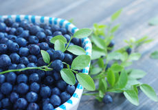 Berries of ripe juicy bilberry in a plate Royalty Free Stock Images