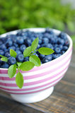 Berries of ripe juicy bilberry in a plate Stock Photo