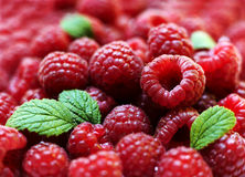 Berries of a ripe raspberr Stock Photo