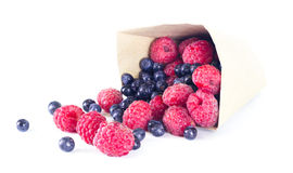 Berries. Ripe raspberries and blueberries scattered from a package isolated Royalty Free Stock Photography