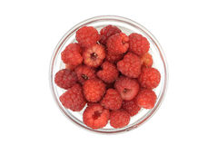 Berries ripe raspberry in a cup of glass Royalty Free Stock Photos