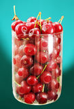 Berries ripe red cherries. Royalty Free Stock Image