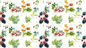 Seamless pattern with wild berries. Hand painted watercolor illustration. stock illustration