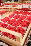 Berries on sale. Fresh raspberries on sale in a marketplace Stock Photography