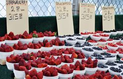 Berries for sale Royalty Free Stock Photo