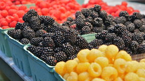 Berries for sale Stock Image