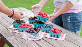 Berries for sale Royalty Free Stock Image