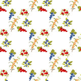 Berries seamless pattern Stock Photography