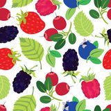 Berries seamless pattern Royalty Free Stock Image