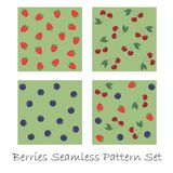 Berries seamless pattern set Royalty Free Stock Photography