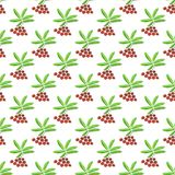 Berries seamless pattern - vector berry texture Stock Photo