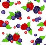 Berries Seamless Pattern Stock Photo