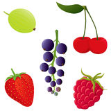 Berries set. Stock Photo