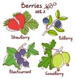 Berries set 3 Stock Photography