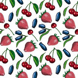 Berries set Stock Images