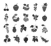 Berries silhouettes icons Stock Photography