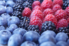 Berries. Some sort of berries: blueberries, blackberries, raspberries Stock Photography