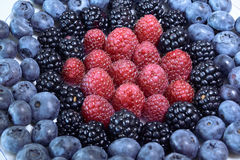 Berries. Some sort of berries: blueberries, blackberries, raspberries Royalty Free Stock Photo
