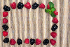 Berries and Spearmint Frame Stock Photos