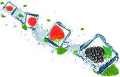 Berries splash Stock Photography