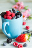 Berries spring fruits on blue wooden boards abstract still life Royalty Free Stock Images