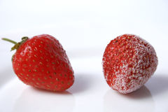 Berries of strawberry Royalty Free Stock Photography