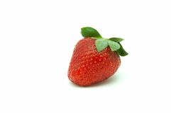 Berries of the strawberry Royalty Free Stock Photography