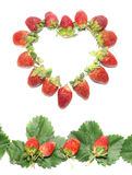 Berries and strawberry leaves frame Royalty Free Stock Photography
