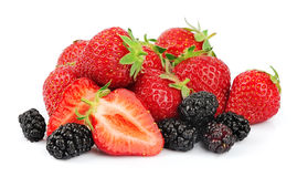 Berries of strawberry and mulberry Stock Image