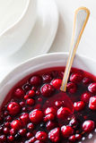 Berries in sugar Stock Photography