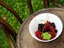 Berries in summer. A bowl of fresh summer berries on a rustic wooden chair with green background royalty free stock image
