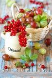Berries. Royalty Free Stock Photo