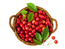 Berries of sweet cherry in a basket on white background Royalty Free Stock Image