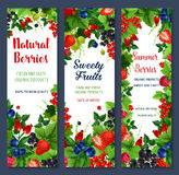 Berries and sweet fruits vector banners set. Berries banners of fresh natural fruits. Red and black currant or raspberry, garden cherry and gooseberry. Vector Stock Photography