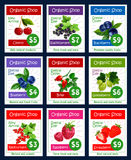 Berries and sweet garden fruits vector price cards Stock Images
